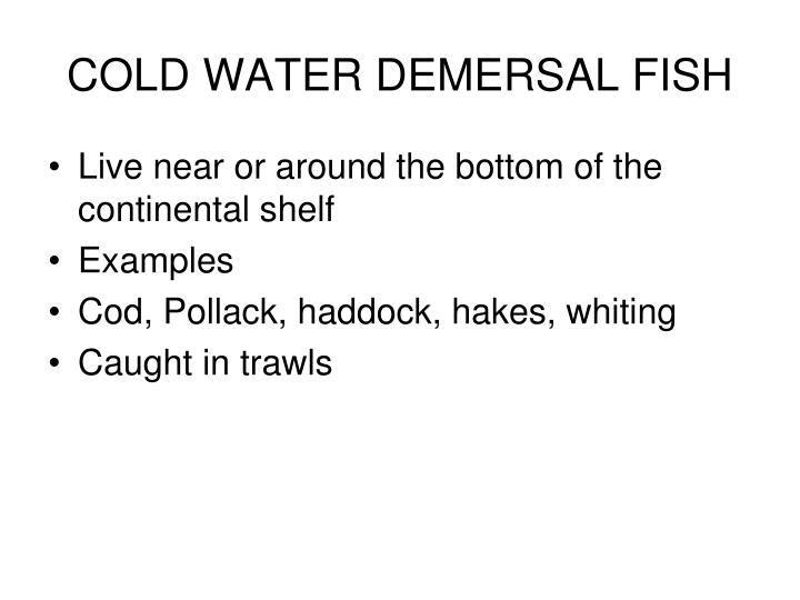 COLD WATER DEMERSAL FISH