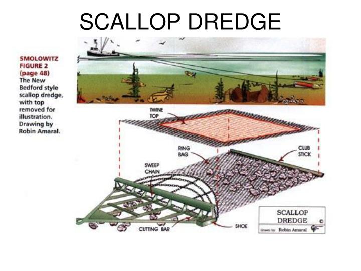 SCALLOP DREDGE