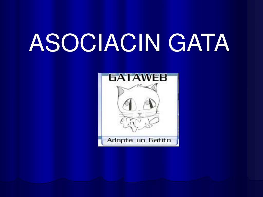 ASOCIACIN GATA