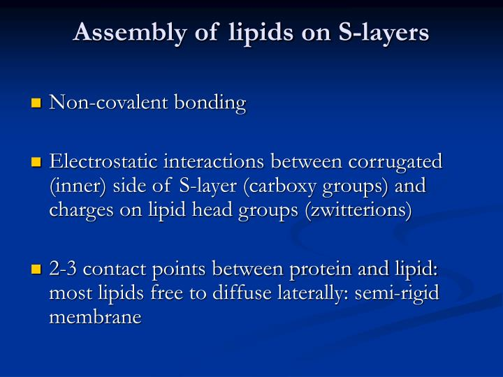 Assembly of lipids on S-layers