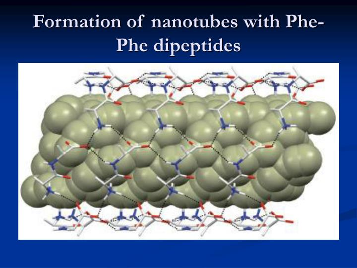 Formation of nanotubes with Phe-Phe dipeptides