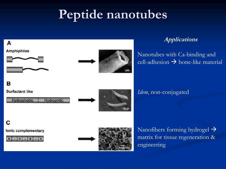Peptide nanotubes