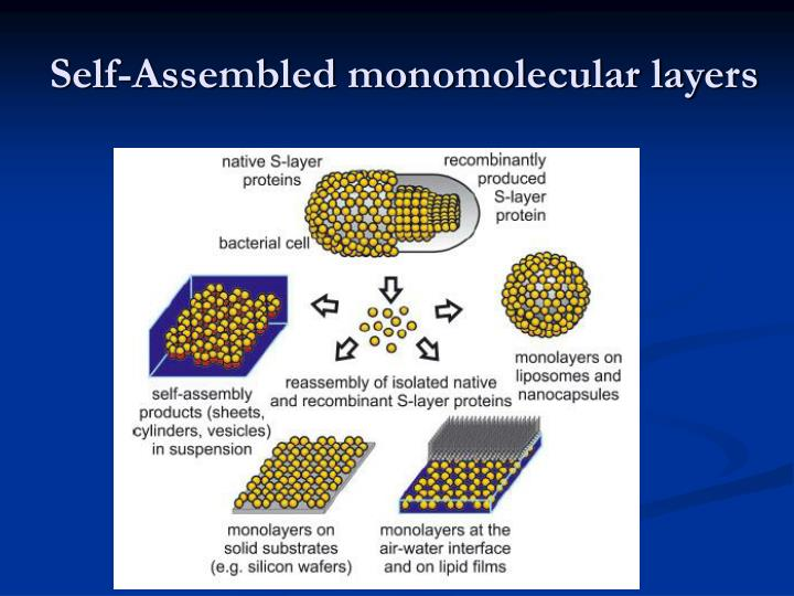 Self-Assembled monomolecular layers