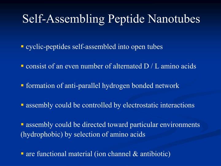 Self-Assembling Peptide Nanotubes
