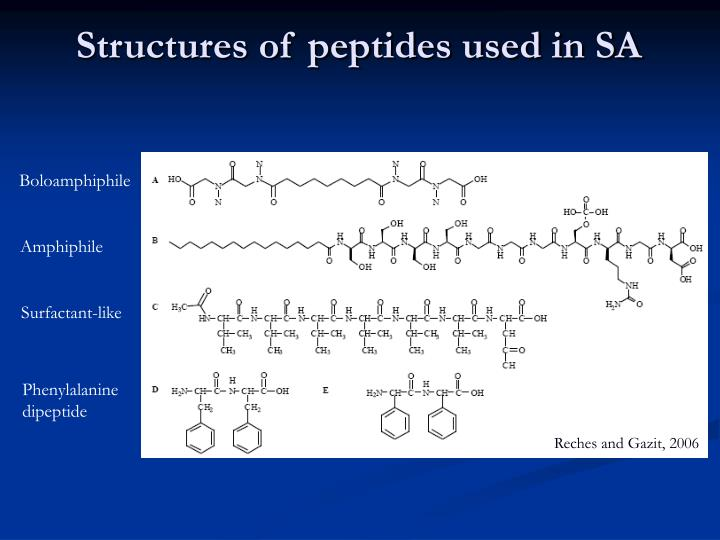 Structures of peptides used in SA