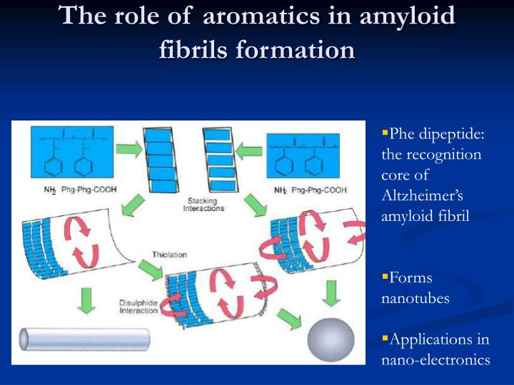 The role of aromatics in amyloid fibrils formation