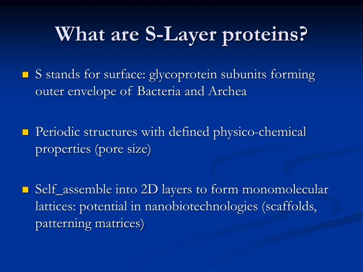 What are S-Layer proteins?