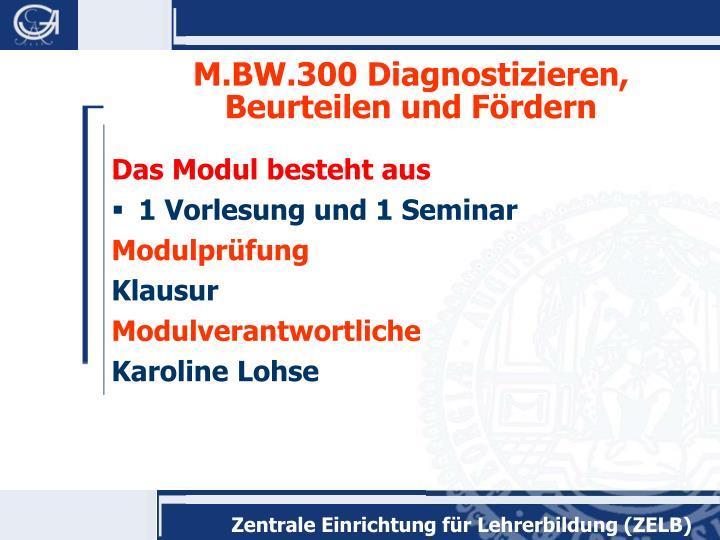 M.BW.300 Diagnostizieren, Beurteilen und Fördern