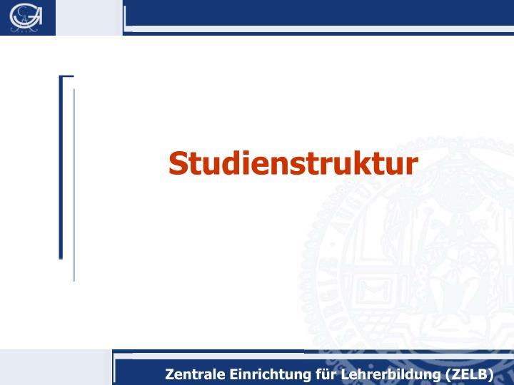 Studienstruktur
