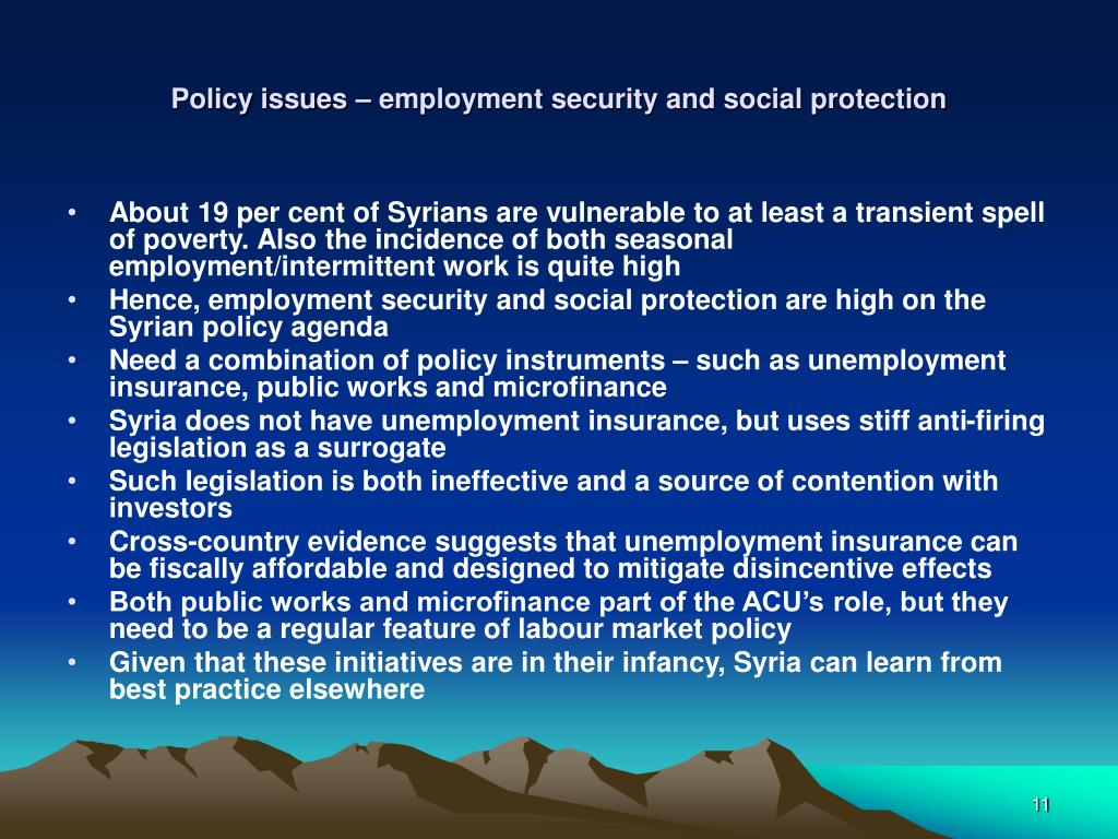Policy issues – employment security and social protection