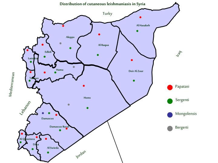 Distribution of cutaneous leishmaniasis in Syria
