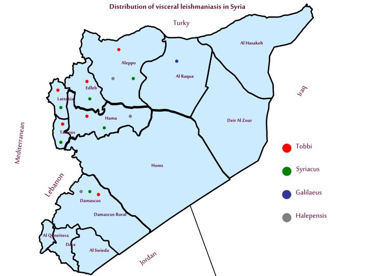 Distribution of visceral leishmaniasis in Syria