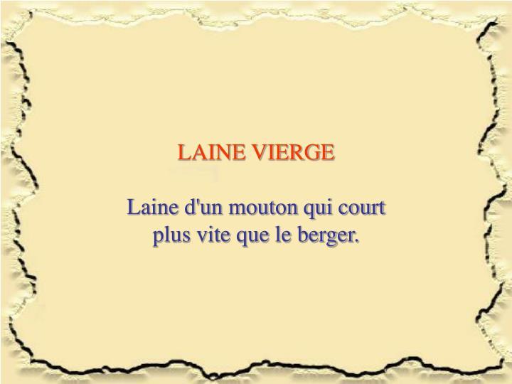 LAINE VIERGE