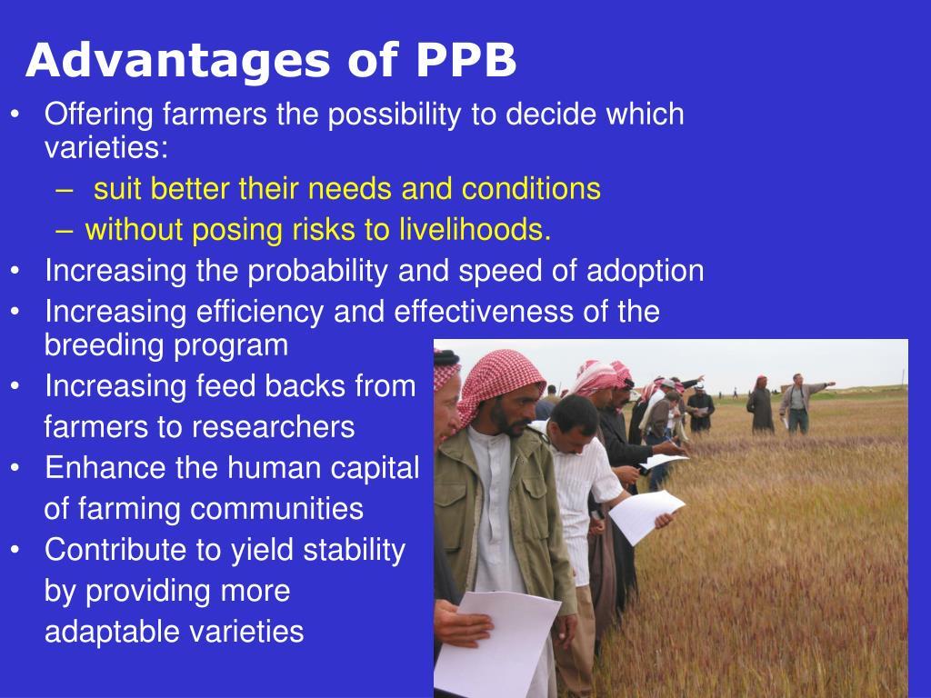 Advantages of PPB