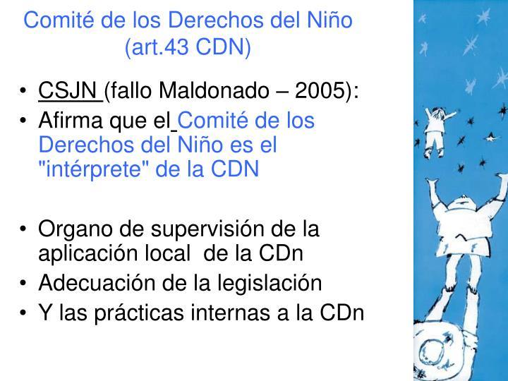 Comité de los Derechos del Niño (art.43 CDN)