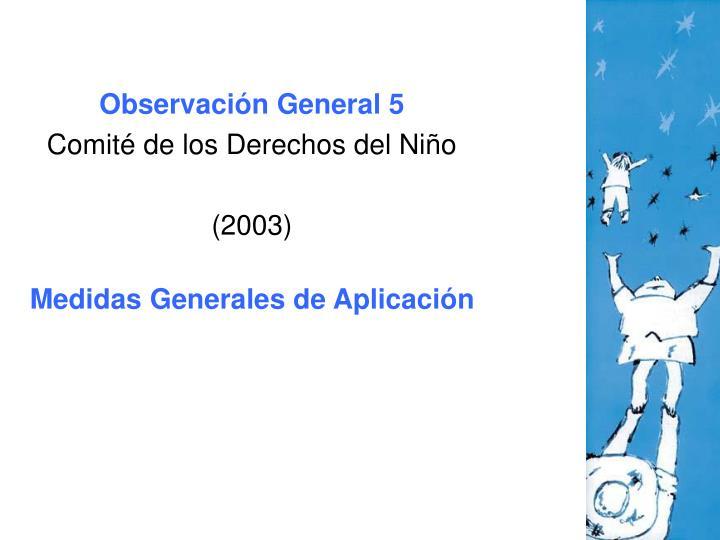 Observación General 5