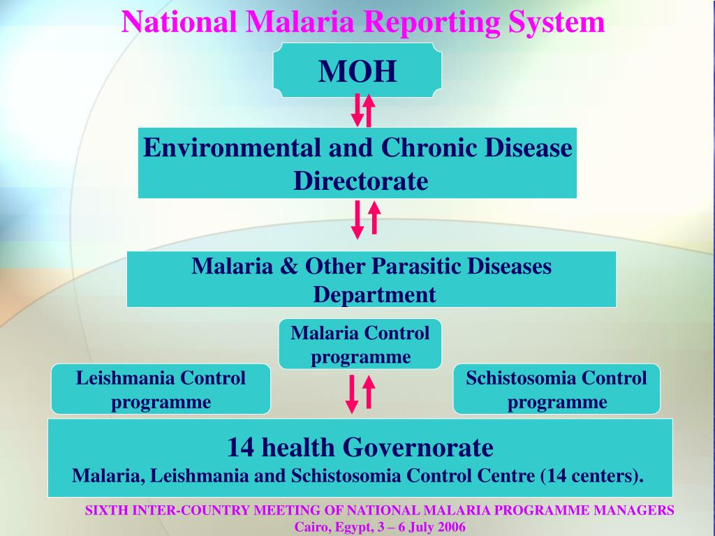 National Malaria Reporting System