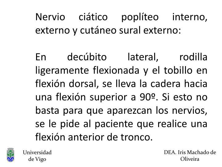 Nervio ciático poplíteo interno, externo y cutáneo sural externo: