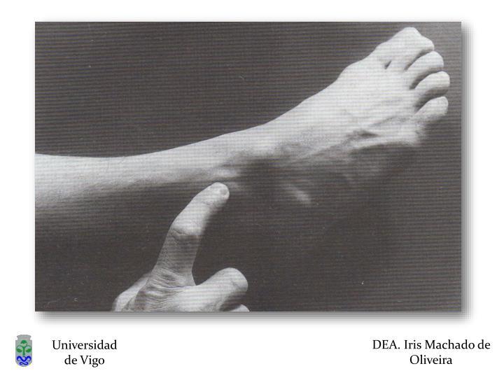 DEA. Iris Machado de Oliveira