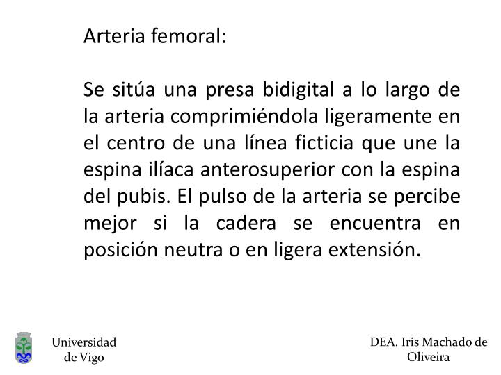 Arteria femoral: