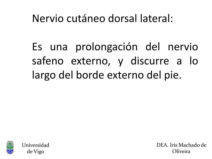 Nervio cutáneo dorsal lateral: