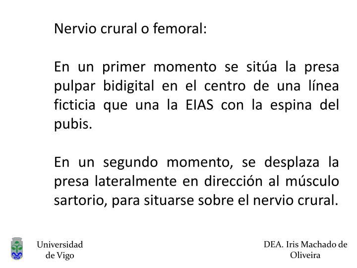 Nervio crural o femoral: