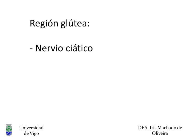 Región glútea: