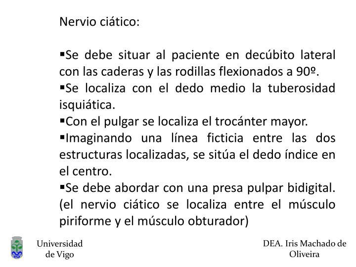Nervio ciático: