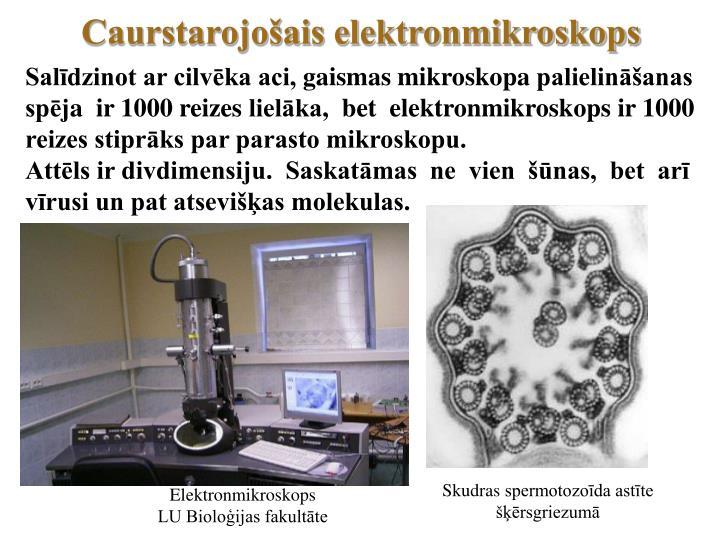 Caurstarojošais elektronmikroskops
