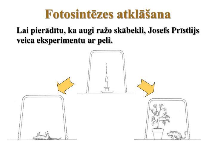Fotosintēzes atklāšana
