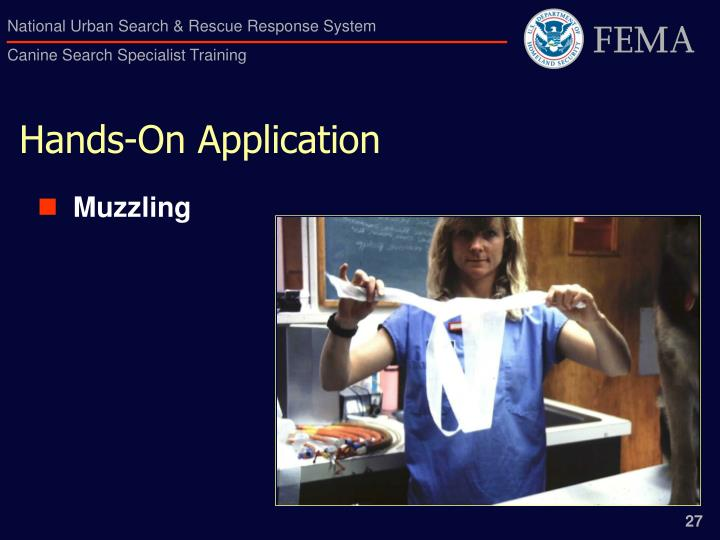 Hands-On Application