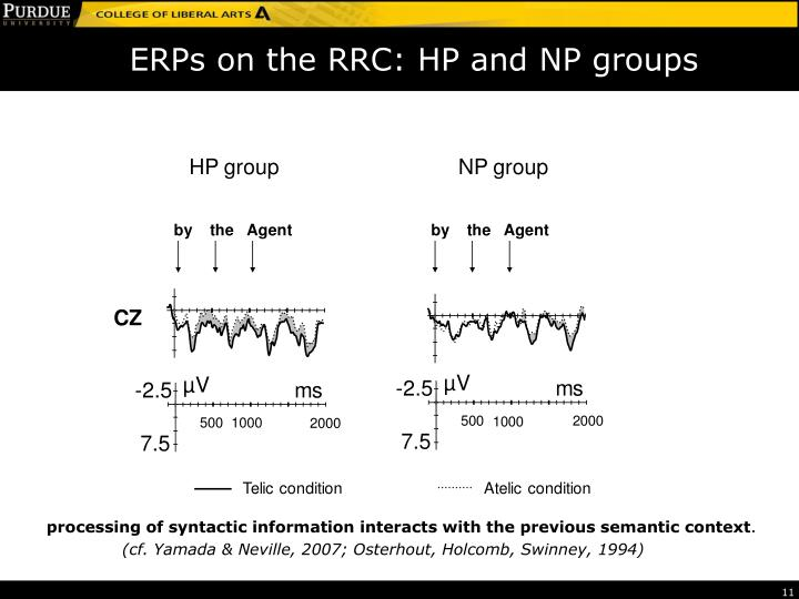 ERPs on the RRC: HP and NP groups