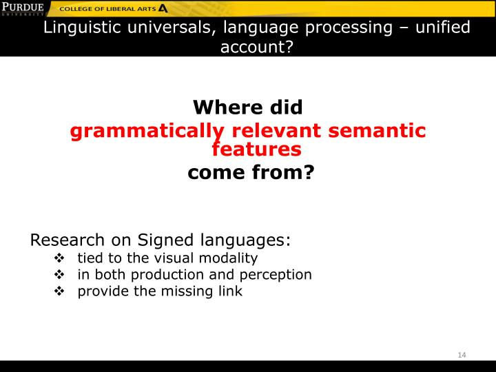 Linguistic universals, language processing – unified account?