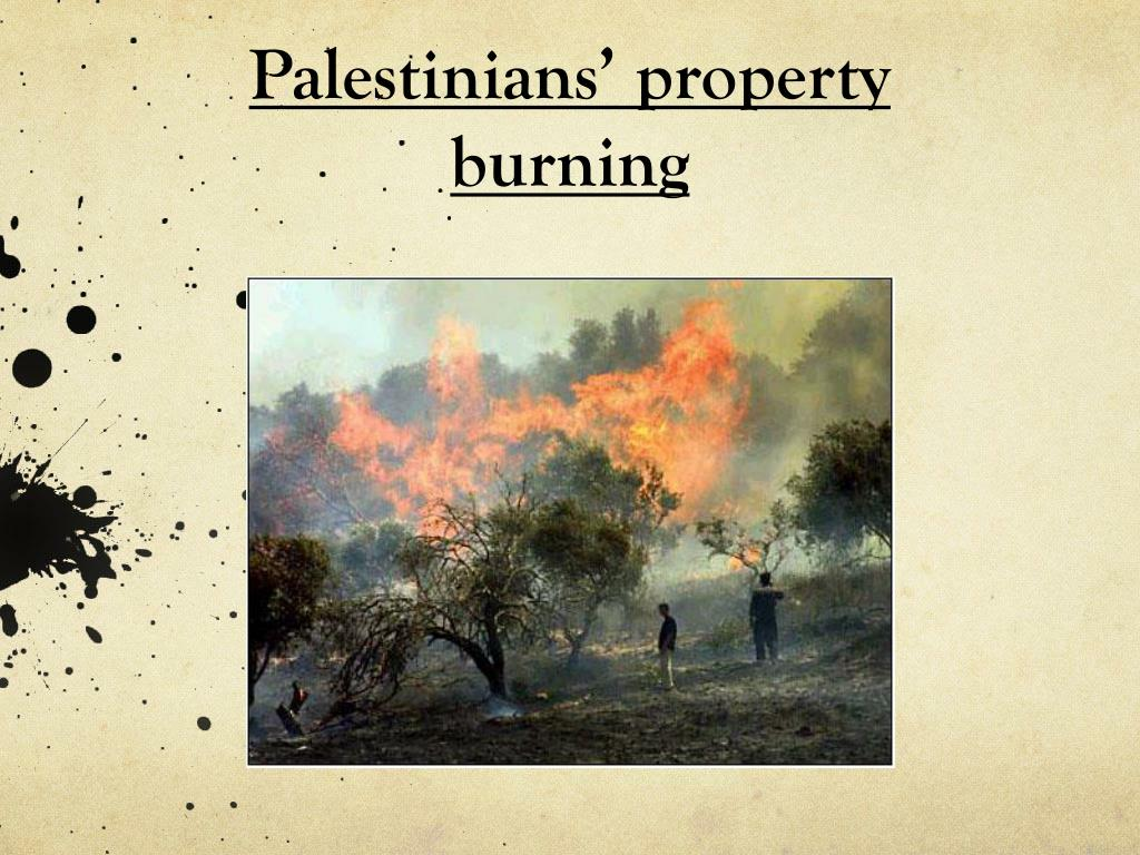 Palestinians' property burning