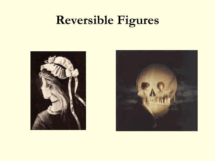Reversible Figures