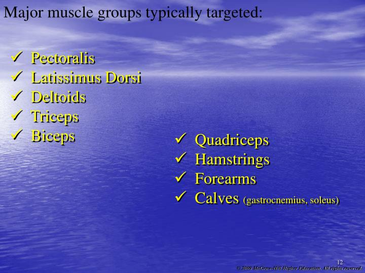 Major muscle groups typically targeted: