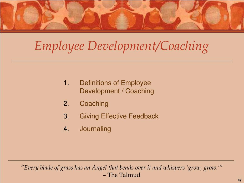 Employee Development/Coaching