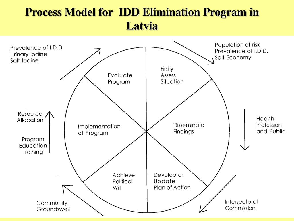 Process Model for  IDD Elimination Program in Latvia