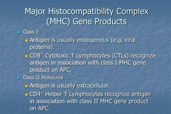 Major Histocompatibility Complex (MHC) Gene Products