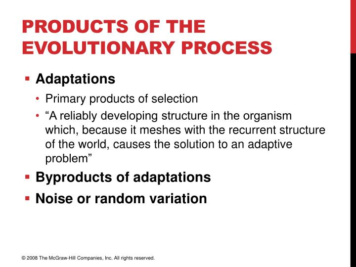 Products of the Evolutionary Process