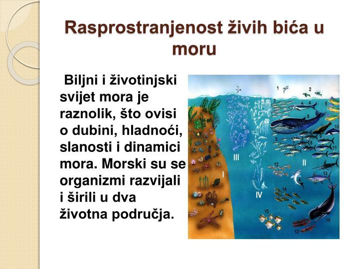 Rasprostranjenost živih bića u moru