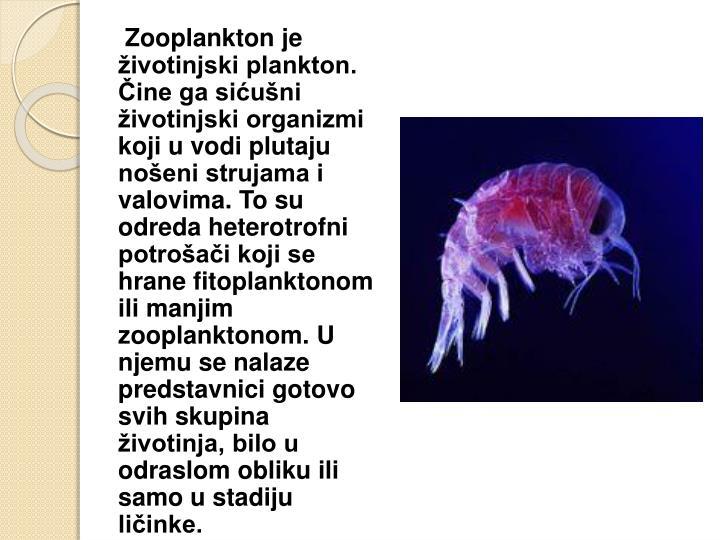 Zooplankton je životinjski plankton. Čine ga sićušni životinjski organizmi koji u vodi plutaju nošeni strujama i valovima. To su odreda heterotrofni potrošači koji se hrane fitoplanktonom ili manjim zooplanktonom. U njemu se nalaze predstavnici gotovo svih skupina životinja, bilo u odraslom obliku ili samo u stadiju ličinke.