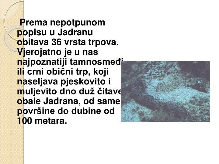 Prema nepotpunom popisu u Jadranu obitava 36 vrsta trpova. Vjerojatno je u nas najpoznatiji tamnosmeđi ili crni obični trp, koji naseljava pjeskovito i muljevito dno duž čitave obale Jadrana, od same površine do dubine od 100 metara.