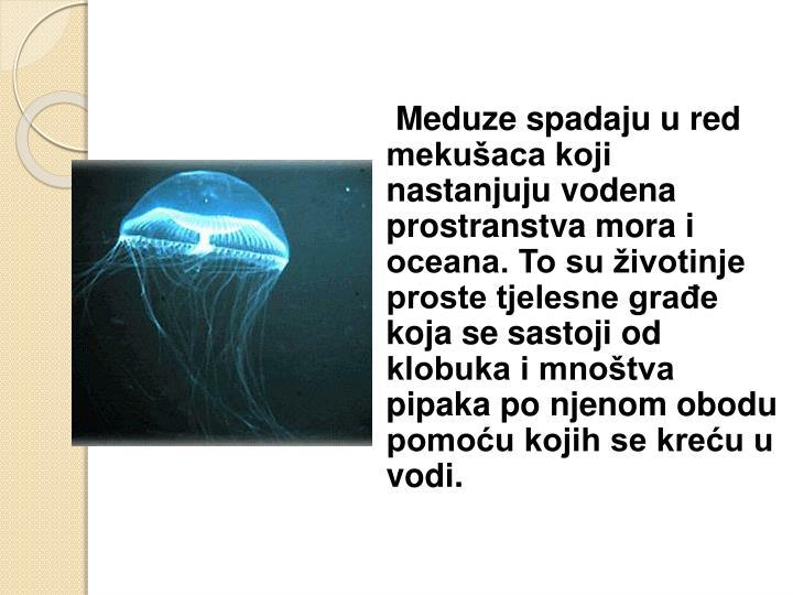 Meduze spadaju u red mekušaca koji nastanjuju vodena prostranstva mora i oceana. To su životinje proste tjelesne građe koja se sastoji od klobuka i mnoštva pipaka po njenom obodu pomoću kojih se kreću u vodi.