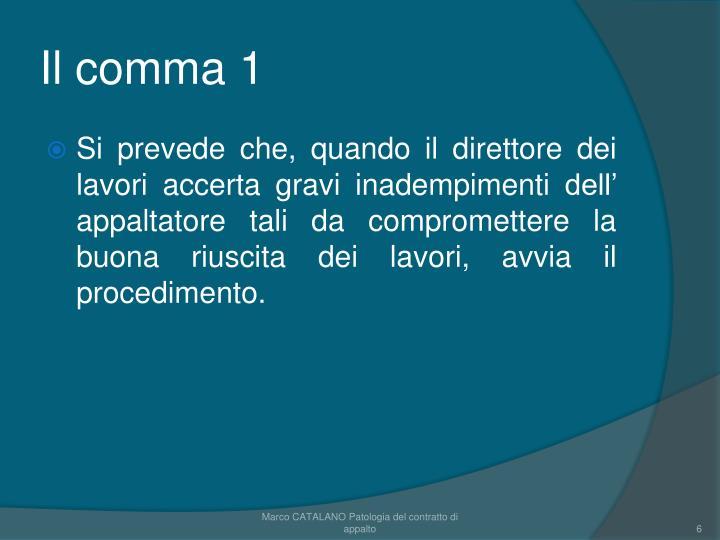 Il comma 1
