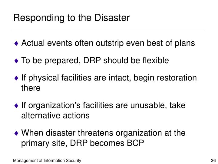 Responding to the Disaster