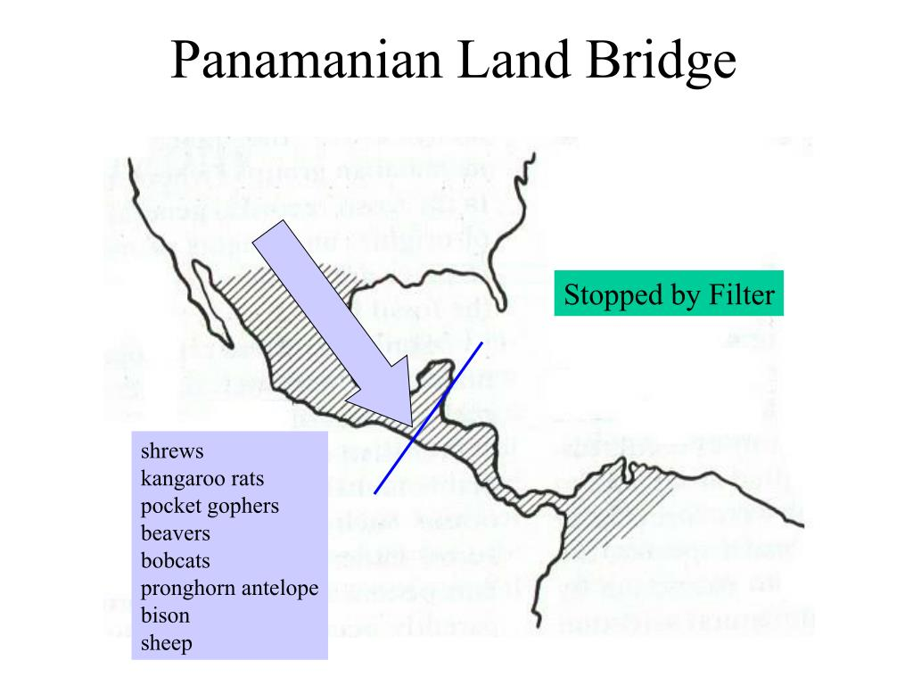 Panamanian Land Bridge