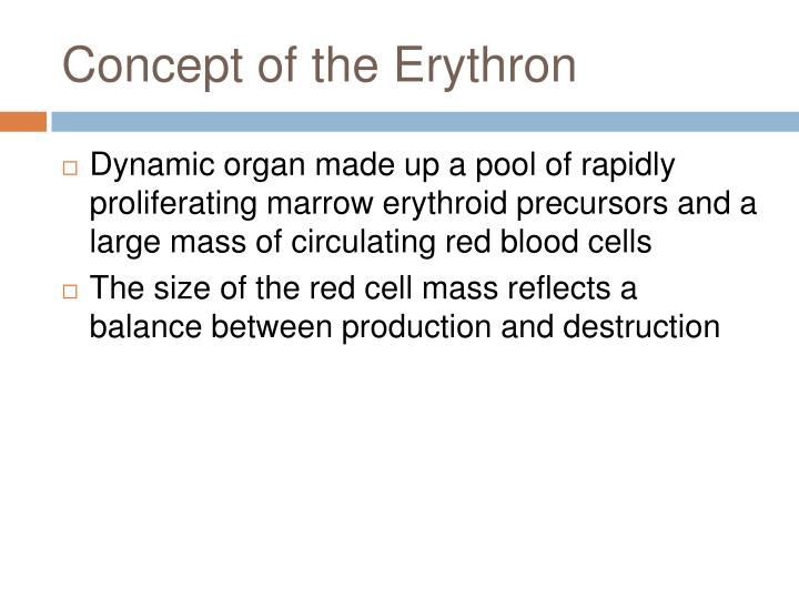 Concept of the Erythron