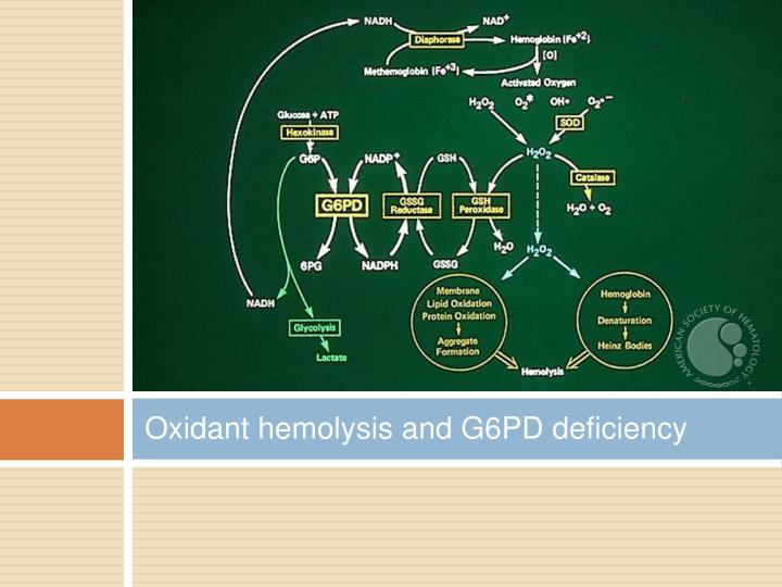 Oxidant hemolysis and G6PD deficiency