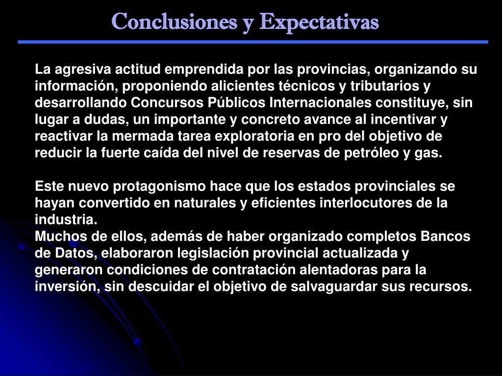 Conclusiones y Expectativas